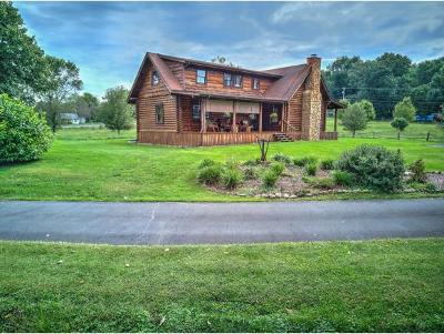 Abingdon Single Family Home For Sale: 18337 Old Jonesboro Road