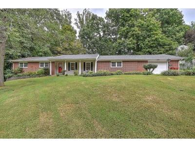 Johnson City Single Family Home For Sale: 1508 Chickees St