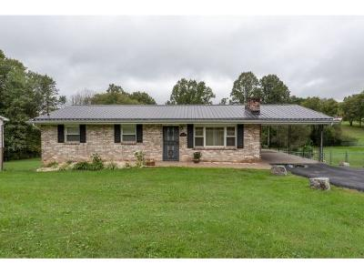Damascus, Bristol, Bristol Va City Single Family Home For Sale: 2306 King Mill Pike