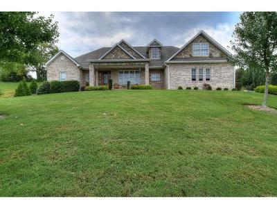 Jonesborough Single Family Home For Sale: 211 Lake Ridge Drive