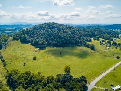 Johnson City Residential Lots & Land For Sale: TBD Frog Level Rd