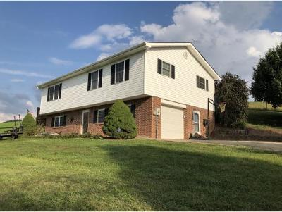 Damascus, Bristol, Bristol Va City Single Family Home For Sale: 8888 Rich Valley Road