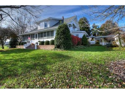 Jonesborough Single Family Home For Sale: 173 Maden Ln