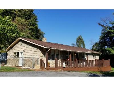 Elizabethton Single Family Home For Sale: 397 Jenkins Hollow Rd