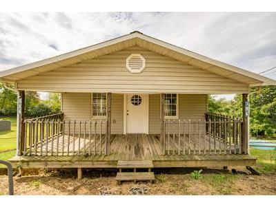 Kingsport Single Family Home For Sale: 396 May Ave.