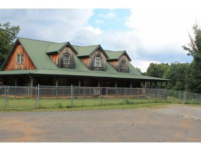 Greeneville Single Family Home For Sale: 11250 Asheville Hwy