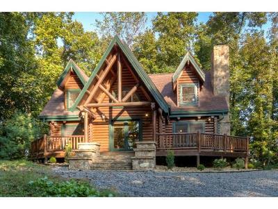 Bristol VA Single Family Home For Sale: $209,995