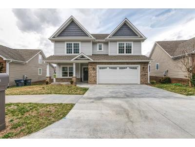 Kingsport Single Family Home For Sale: 1512 Polo Fields Place