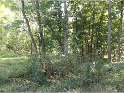 Unicoi Residential Lots & Land For Sale: TR8 Crystal Lane