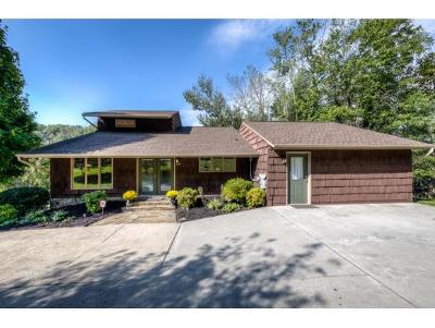 Bluff City Single Family Home For Sale: 449 Lakeshore Rd
