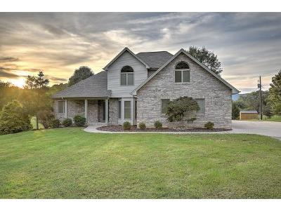 Kingsport Single Family Home For Sale: 892 Shady View Road