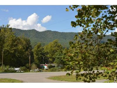 Hampton Residential Lots & Land For Sale: 5536 Hwy 19e
