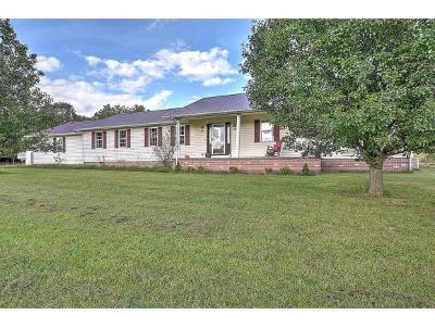 Bluff City Single Family Home For Sale: 1291 Highway 19e