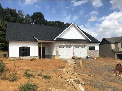 Gray Single Family Home For Sale: 1075 Savin Falls