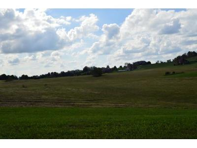 Greene County Residential Lots & Land For Sale: Lot 2 Waterstone Cr