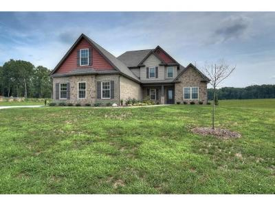 Piney Flats Single Family Home For Sale: 977 Broadstone Way