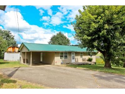Single Family Home For Sale: 155 Skyline Dr
