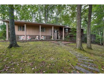 Johnson City Single Family Home For Sale: 1806 Galen Drive
