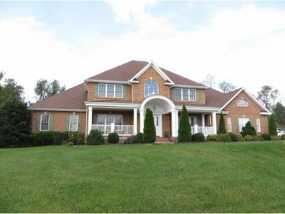 Abingdon Single Family Home For Sale: 21537 Carol Jane Lane #21537