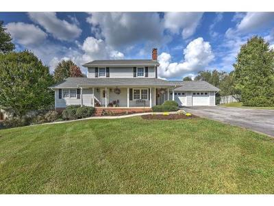 Gray Single Family Home For Sale: 245 Highland Hills Drive