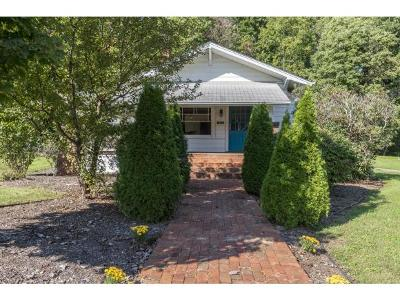 Damascus, Bristol, Bristol Va City Single Family Home For Sale: 441 Brook St.