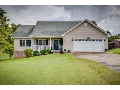 Gray Single Family Home For Sale: 668 Liberty Church Road