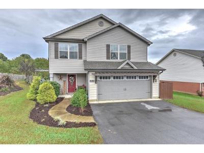 Jonesborough Single Family Home For Sale: 2088 Ida Sue Dr