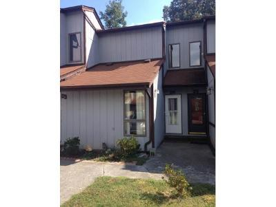 Blountville Condo/Townhouse For Sale: 780 Hamilton Road D4 #D4