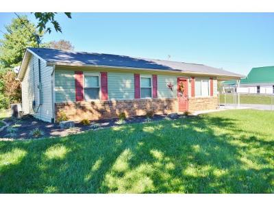 Rogersville Single Family Home For Sale: 327 Guntown Rd