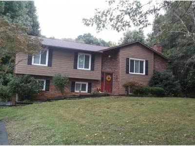 Single Family Home For Sale: 1403 Amber Drive