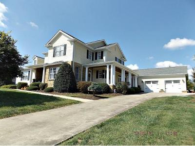 Blountville Single Family Home For Sale: 149 Grande Harbor Way