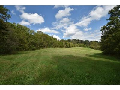 Johnson City Residential Lots & Land For Sale: Pickens Bridge Rd S
