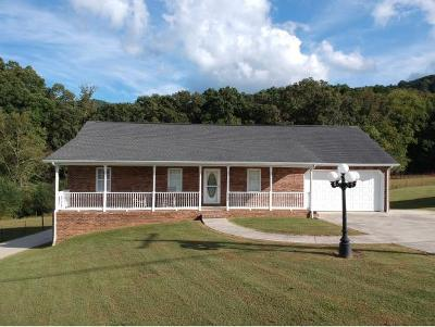 Elizabethton Single Family Home For Sale: 2527 Siam Rd