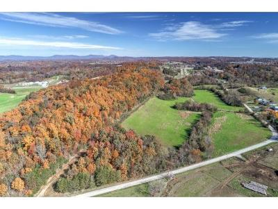 Greene County Residential Lots & Land For Sale: 1018 Old Knoxville Hwy