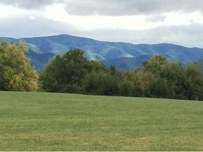 Washington-Tn County Residential Lots & Land For Sale: 151 Garland Road