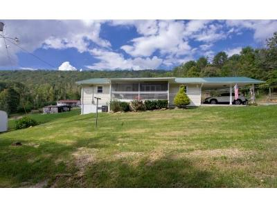 Rogersville Single Family Home For Sale: 865 Mountain View Road