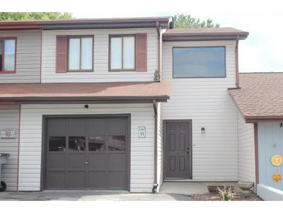 Bristol TN Condo/Townhouse For Sale: $109,500