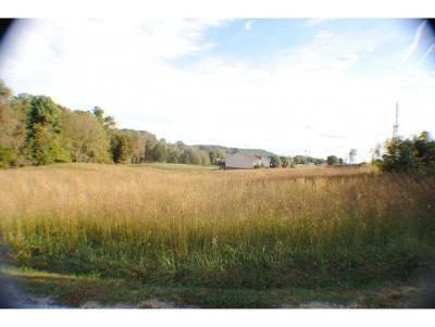 Piney Flats Residential Lots & Land For Sale: Devault Bridge Rd.