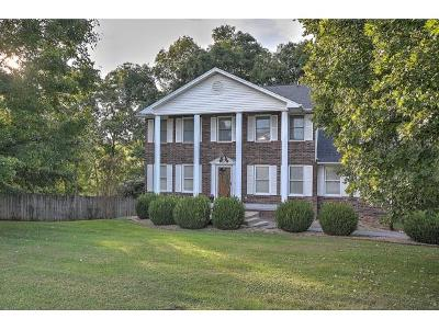 Damascus, Bristol, Bristol Va City Single Family Home For Sale: 15379 Woodstone Circle