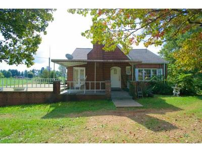 Gray Single Family Home For Sale: 6613 Kingsport Hwy