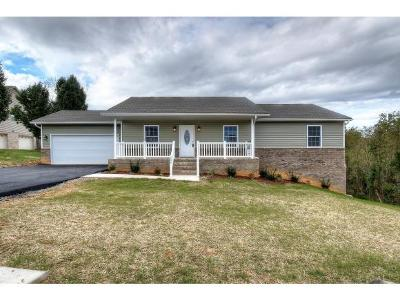 Single Family Home For Sale: 206 Merry Anne Drive