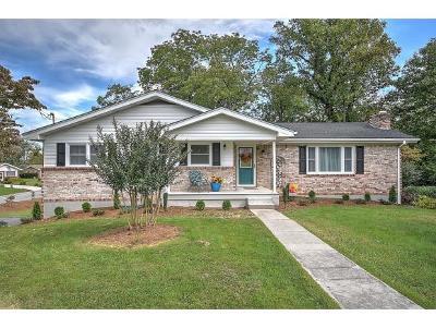 Bristol VA Single Family Home For Sale: $199,000