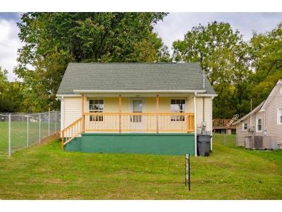 Bristol TN Single Family Home For Sale: $89,999