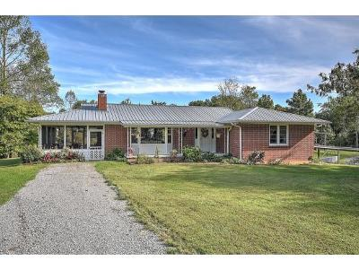 Rogersville Single Family Home For Sale: 202 Grigsby School Road
