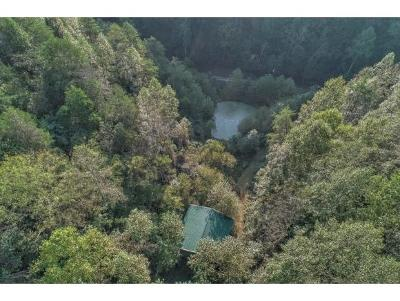 Hawkins County Residential Lots & Land For Sale: TBD Bill Hicks Road