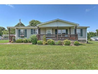 Piney Flats Single Family Home For Sale: 200 Wesley Dr