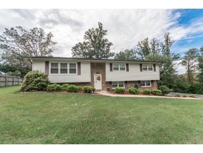 Jonesborough Single Family Home For Sale: 1209 McCoy Circle