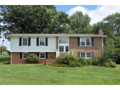 Abingdon Single Family Home For Sale: 426 Brookhill Drive #9311