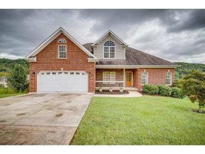 Kingsport Single Family Home For Sale: 4711 Sterling Lane