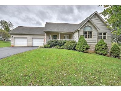 Bristol TN Single Family Home For Sale: $299,900